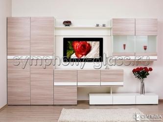 Стенка Лофт-2 НМ 013.09 со Шкафом для одежды НМ 013.40-03