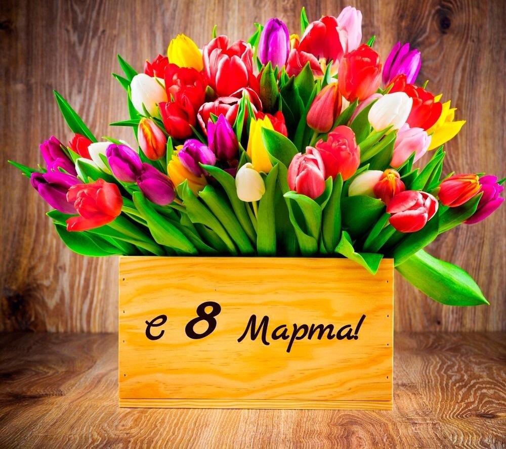 картинки с цветами поздравления 8 марта розовый японский